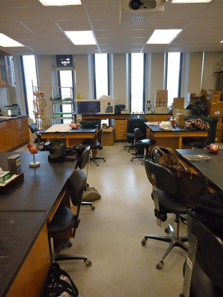 The science lab at Fordham is the area where many natural science students work and study. (Katherine Fotinos/The Observer)