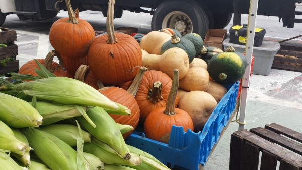 Pumpkins, squashes, and corns are some of fall's familiar sights. (Mimi Ahn/The Observer)