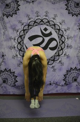 The Forward Fold Pose (pictured above) is one of many yoga poses that can be beneficial for students. (Photo Illustration by Andronika Zimmerman/ The Observer)