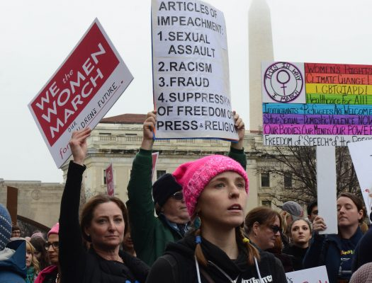 Around 500,000 people attended the Women's March on Washington in D.C. on Jan. 21. (ERIN O'FLYNN/THE OBSERVER)