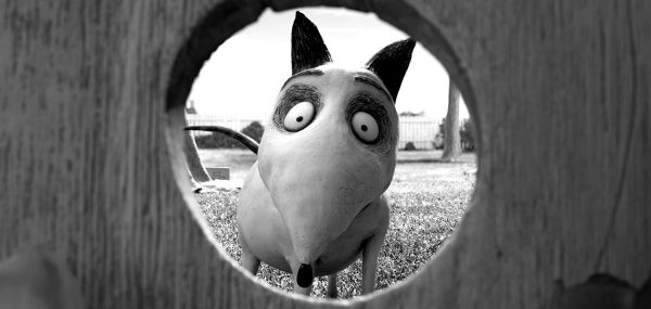 %22Frankenweenie%22+is+directed+by+Tim+Burton%2C+known+for+his+Halloween+films.+%28COURTESY+OF+DISNEY%29
