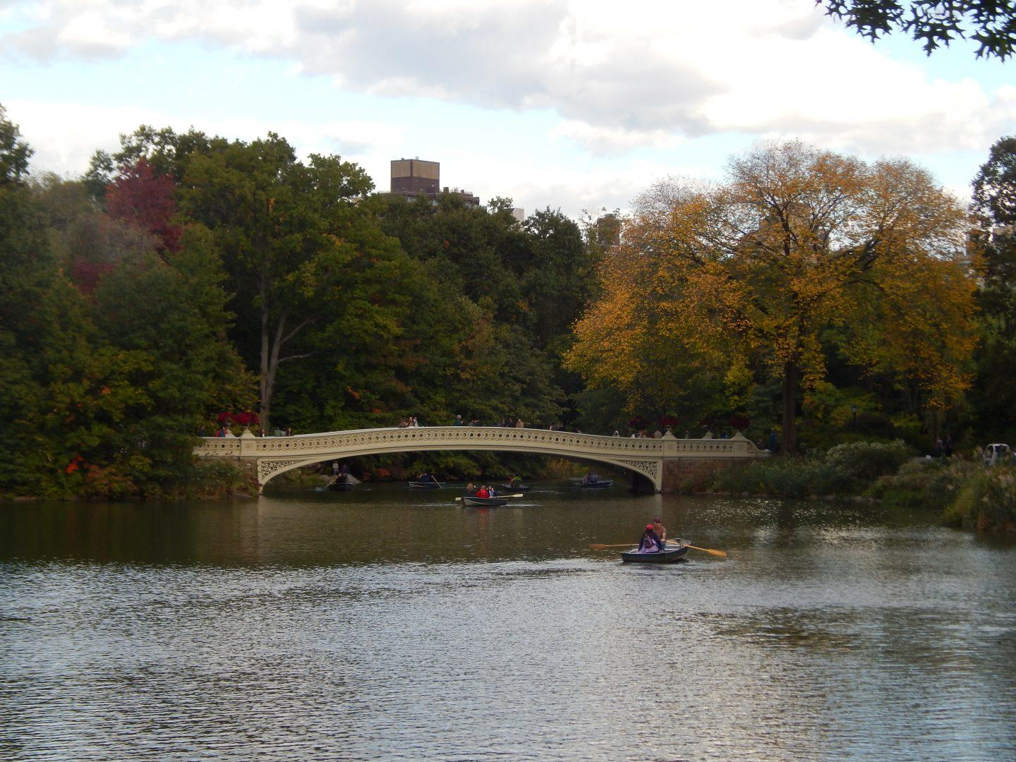 Central Park is the perfect getaway from the hectic buzz of the city, and it's only blocks away from Fordham's campus. (COURTESY OF LYDIA BENNER)
