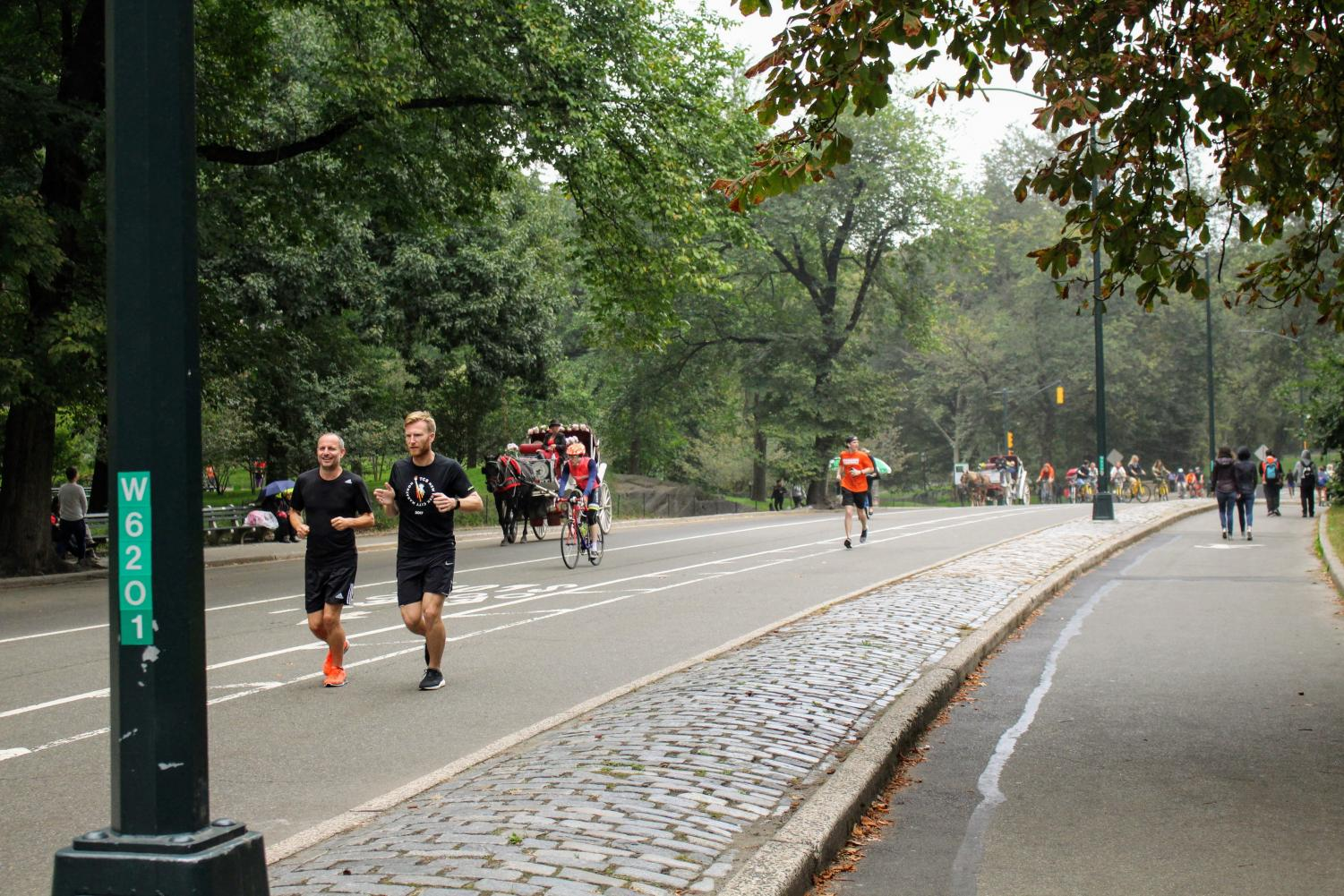 Runners in central park.
