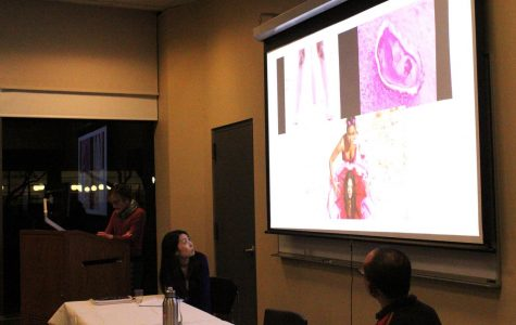 WGSS Celebrates International Women's Day with Research Roundtable