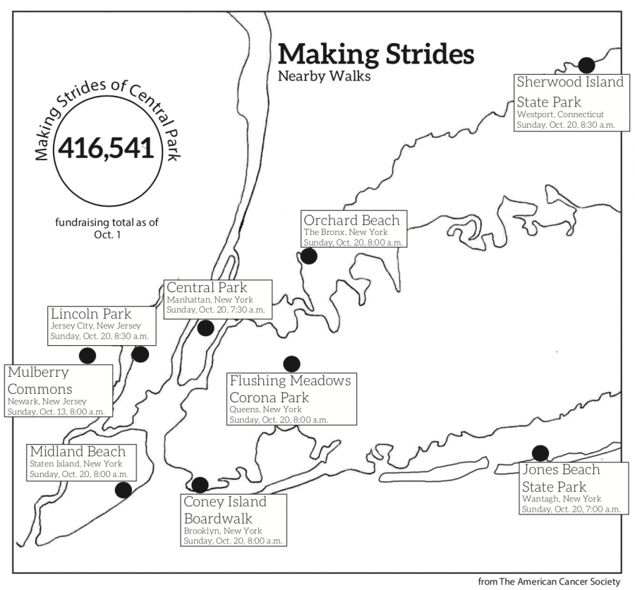 There+are+many+opportunities+in+the+NYC+area+to+support+breast+cancer+research%2C+including+walks+in+all+five+boroughs+and+the+surrounding+regions.