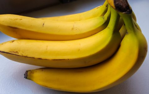 Bananas are one of a few foods that contain probiotics, which are good bacteria that exist in the stomach.
