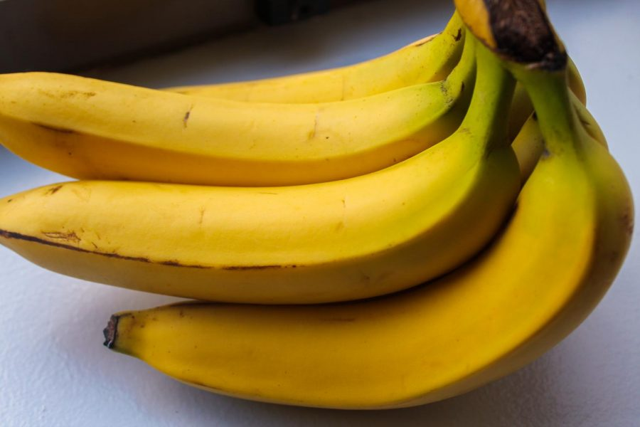 Bananas+are+one+of+a+few+foods+that+contain+probiotics%2C+which+are+good+bacteria+that+exist+in+the+stomach.+