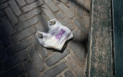 The Implications of NY State's Plastic Bag Ban