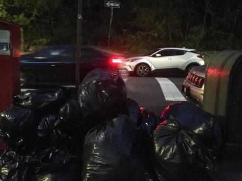 Trash bags on a New York curb