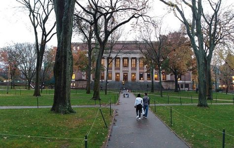 harvard campus, two students walking on sidewalk toward building in between trees and grass
