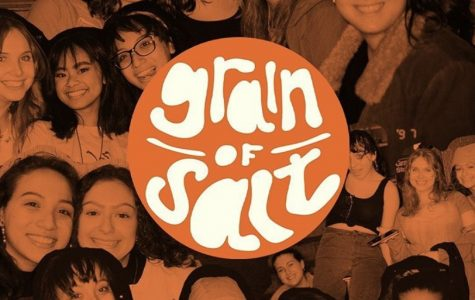 grain of salt e-board and logo
