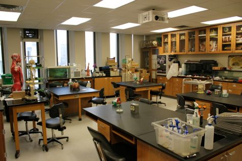 After shuttering all research since spring, students and teachers alike are now returning to their labs, although mostly continuing to work remotely.