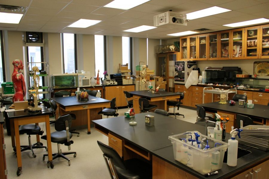 After+shuttering+all+research+since+spring%2C+students+and+teachers+alike+are+now+returning+to+their+labs%2C+although+mostly+continuing+to+work+remotely.