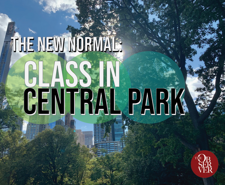 "photo of trees in central park with sky and skyscrapers in background, with text on top that says ""The New Normal - Class in Central Park """