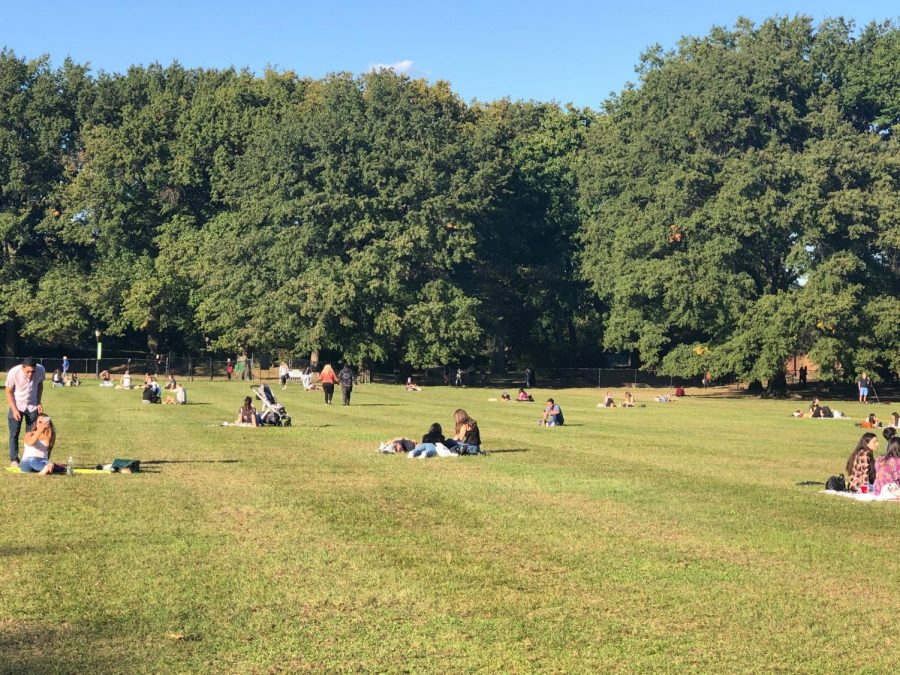 people sit outdoors in the grass of Central Park on a sunny day