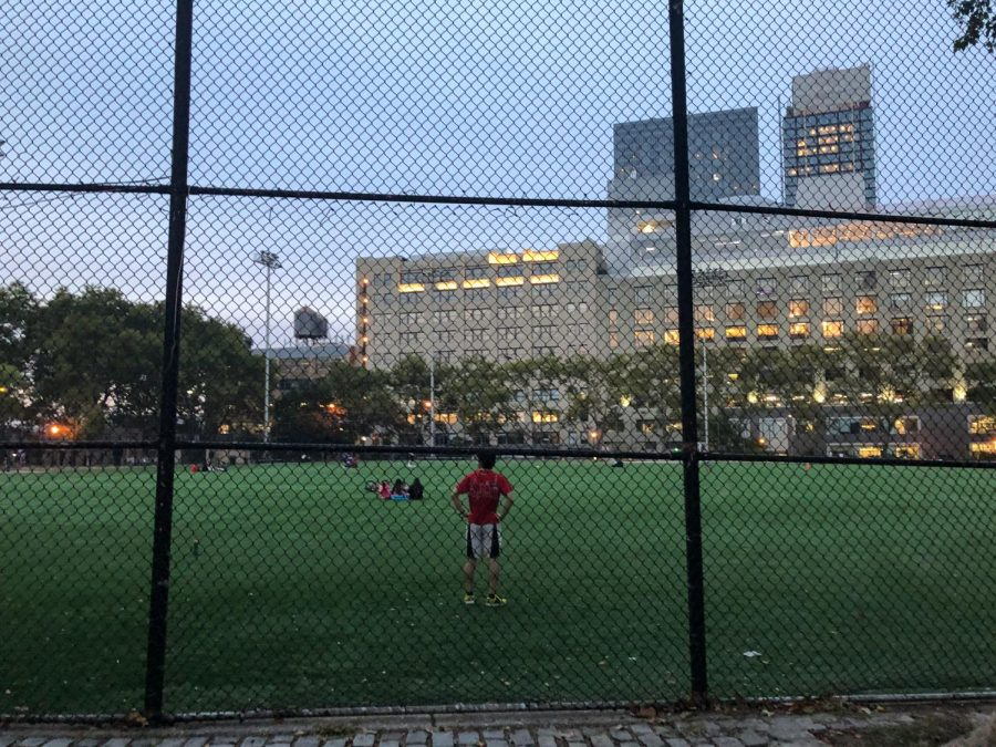 A park-goer stands with their hands at their hips as they look across the field. The scene is seen through a chain link fence and the car dealerships and other midtown buildings can be seen bordering the park in the background