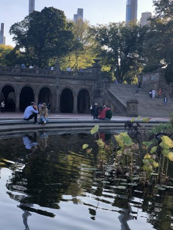 people sitting on the rim of a fountain near green spaces in central park