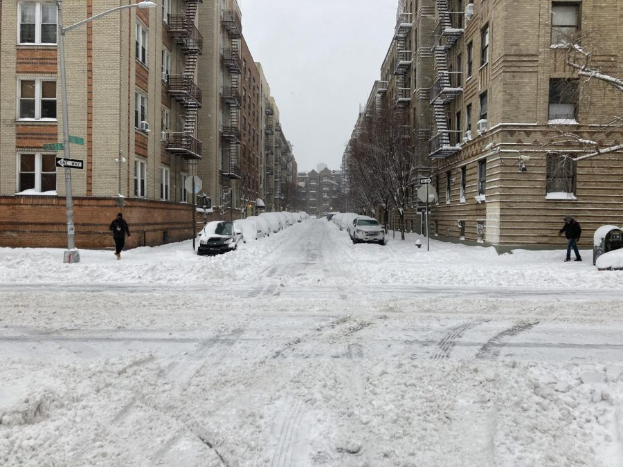 a street of cars covered in snow and plowed in