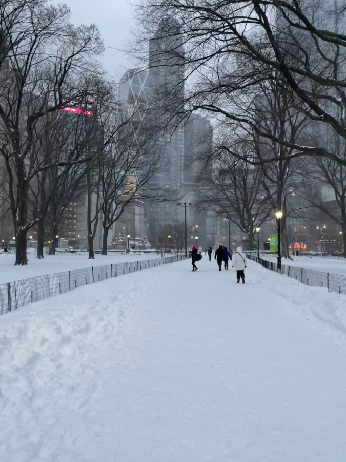 a snow covered path in Central Park with midtown buildings in the background