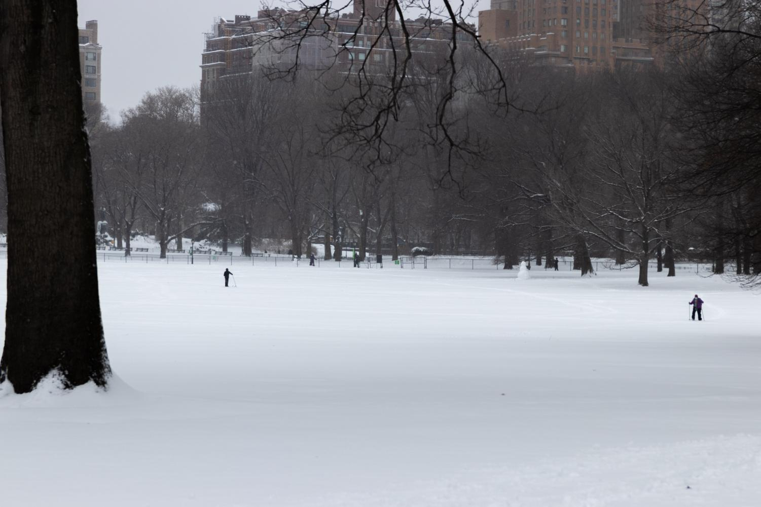 a blanket of snow covers a meadow in Central Park