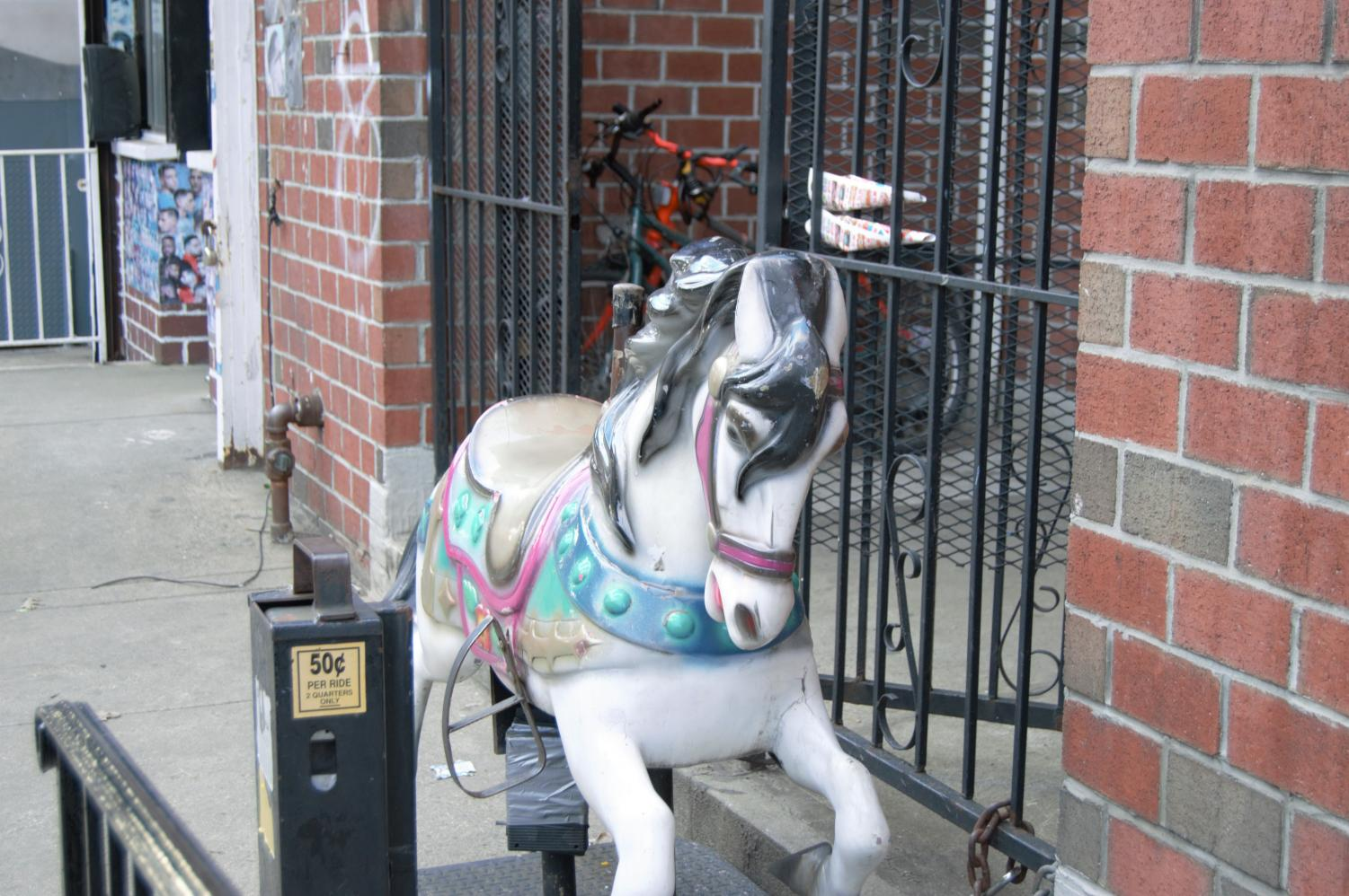 horse in front of a gate in jackson heights