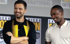lead actors from the falcon and the winter soldier standing next to each other