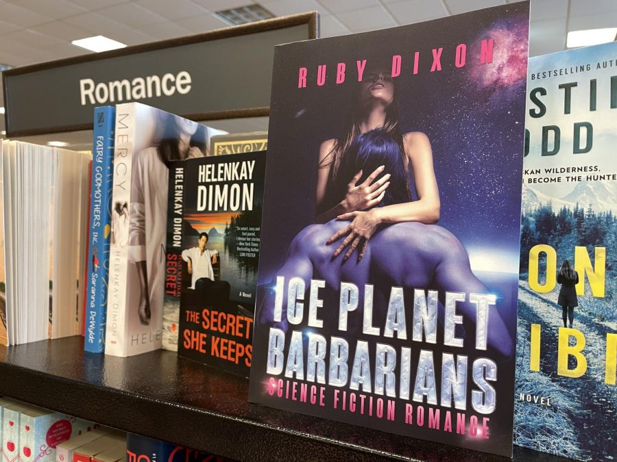 """A book titled """"Ice Planet Barbarians"""" by Ruby Dixon, a paranormal romance author"""